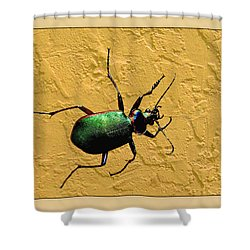 Shower Curtain featuring the photograph Jeweltone Beetle by Debbie Portwood