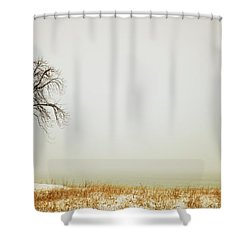 Jordan, Ontario, Canada A Tree Along Shower Curtain by Pete Stec