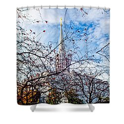 Jordan River Temple Branches Shower Curtain by La Rae  Roberts