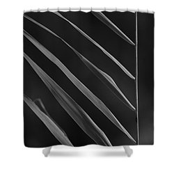 Just Grass Bw Shower Curtain by Heiko Koehrer-Wagner