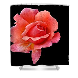 Shower Curtain featuring the photograph Just Peachy by Cindy Manero