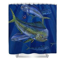 Just Taken Shower Curtain by Carey Chen