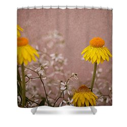 Katy Perry Shower Curtain by Trish Tritz