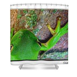 Shower Curtain featuring the photograph Kermit's Kuzin by Debbie Portwood