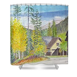 Shower Curtain featuring the painting Keystone Co by Carol Flagg