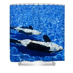 Killer Whales Shower Curtain by Dave Fleetham - Printscapes