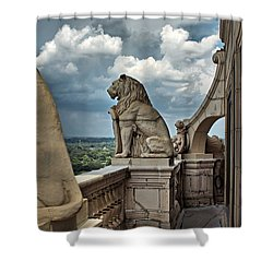 King Of The Beasts In The Land Of The Braves Shower Curtain