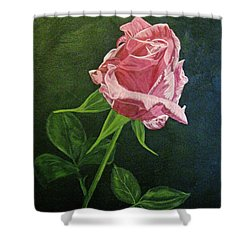 Kiss Of The Morning Sun 2 Shower Curtain by Wendy Shoults