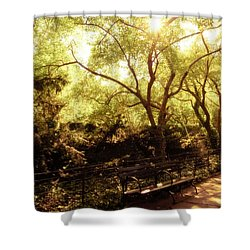 Kissed By The Sun - Central Park - New York City Shower Curtain by Vivienne Gucwa