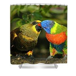 Kissing Birds Shower Curtain by Carolyn Marshall