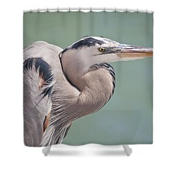 Shower Curtain featuring the photograph La Garza by Steven Sparks