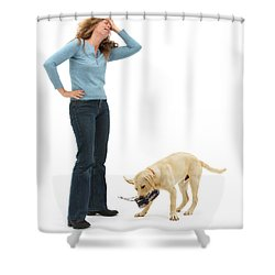 Labrador Golden Retriever Pup Chewing Shower Curtain by Mark Taylor