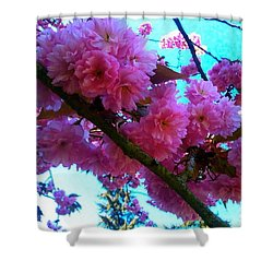 Laden Pink Flowering Dogwood Shower Curtain