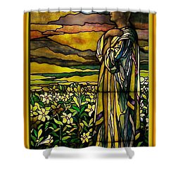 Lady Stained Glass Window Shower Curtain by Thomas Woolworth