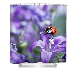Ladybug And Bellflowers Shower Curtain by Nailia Schwarz