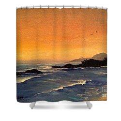 Laguna Sunset Shower Curtain by Barbara Gilroy