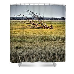 Laid To Rest Shower Curtain