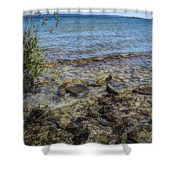 Shower Curtain featuring the photograph Lake Michigan 1 by Janice Adomeit