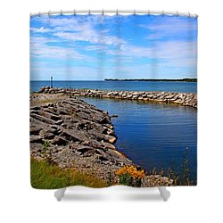 Shower Curtain featuring the photograph Lakeside Bend by Davandra Cribbie