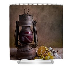 Lamp And Fruits Shower Curtain by Nailia Schwarz