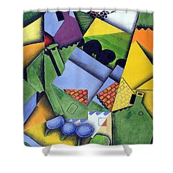 Landscape And Houses At Ceret Shower Curtain by Juan Gris
