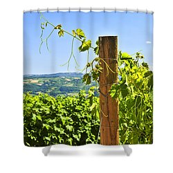 Landscape With Vineyard Shower Curtain by Elena Elisseeva