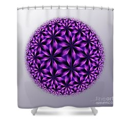 Last Dream Mandala Shower Curtain by Danuta Bennett