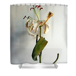 Shower Curtain featuring the photograph Last Moments by Pravine Chester