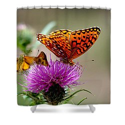 Late For Lunch Shower Curtain