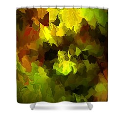 Late Summer Nature Abstract Shower Curtain by David Lane