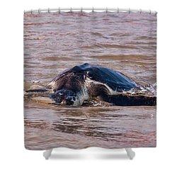 Laurel Swims Away Shower Curtain