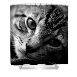 Lazy Days Shower Curtain