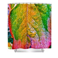 Leaf 2 Shower Curtain by Bill Owen