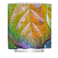 Leaf Shower Curtain by Bill Owen