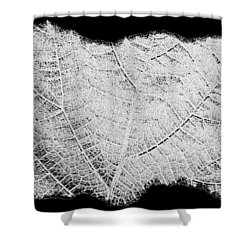 Leaf Design- Black And White Shower Curtain by Will Borden
