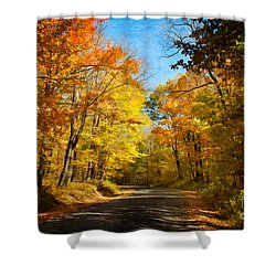 Leaf Peeping Shower Curtain by Lois Bryan