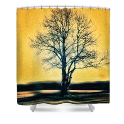 Leafless Tree Shower Curtain by Jutta Maria Pusl