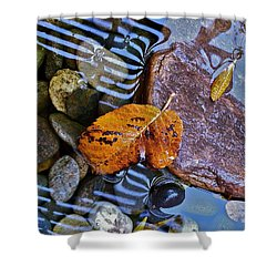 Shower Curtain featuring the photograph Leaves Rocks Shadows by Bill Owen