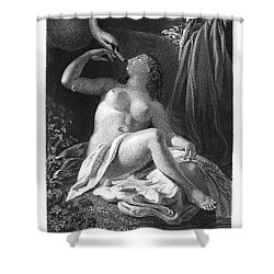 Leda And The Swan Shower Curtain by Granger