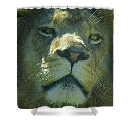 Leo,lion Shower Curtain