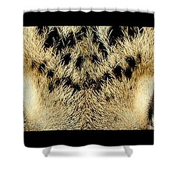 Leopard Eyes Shower Curtain by Sumit Mehndiratta
