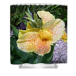 Shower Curtain featuring the digital art Leopard Flower by Claude McCoy