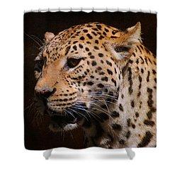 Leopard IIi Shower Curtain by Jai Johnson