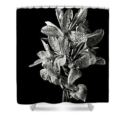 Leopard Lily In Black And White Shower Curtain