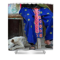 Let Sleeping Dogs Dream Shower Curtain by Nola Lee Kelsey