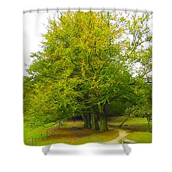 Lets Take A Seat Here Shower Curtain by Go Van Kampen