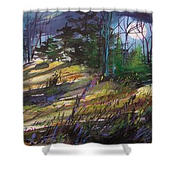 Shower Curtain featuring the painting Light Against Indigo by John Williams
