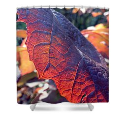 Light Of The Lifeblood Shower Curtain by Trish Hale