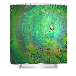 Lightning Spider Shower Curtain by Helmut Rottler