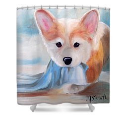 Linus And His Blanket Shower Curtain by Mary Sparrow